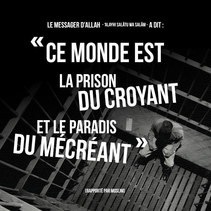 """Le Prophète - 'alayhi salâtu wa salâm - a dit : """"Ce monde est la prison du croyant et le paradis du mécréant."""" [rapporté par Muslim]"""