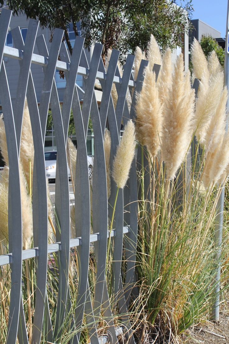 Best 25 Steel Fence Ideas On Pinterest Steel Companies