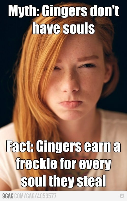 ok. Calling a Redhead a Ginger is kind of stupid. But I actually like this joke. I have a lot of freckles. ^_~