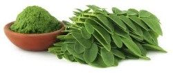 Containing over 90 nutrients and 46 antioxidants, Moringa (Moringa Oleifera) is one of nature's most nutritious foods. ...Starvation Is NOT Healthy. Stop counting calories & go #SANE w/me at http://SANESolution.com