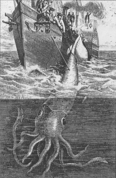 Sailors used to think that they were sea monsters. It's not hard to see why. The giant squid was depicted as terrifying in literature such as Moby Dick and Twenty Thousand Leagues Under the Sea. It also inspired the legend of the sea monster called the Kraken.