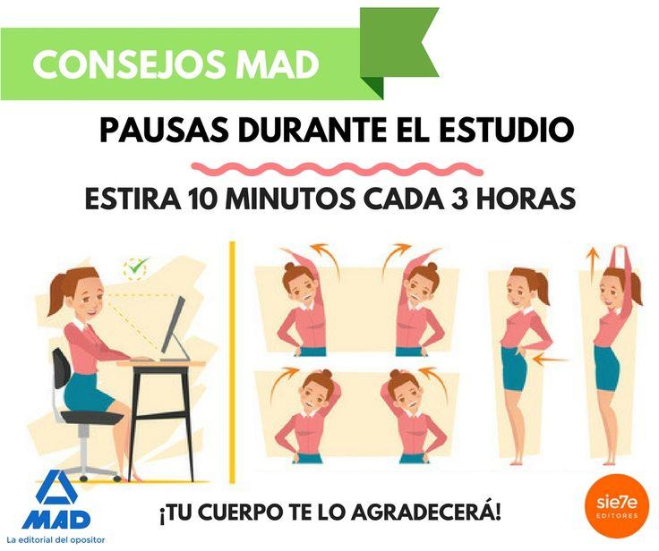 Posturas, estiramientos, posturas en la oficina, salud, salud física, columna, estirar músculos, musculatura