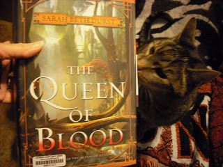 """Grab A Book From Our Stack: """"The Queen of Blood"""" is Really Good"""