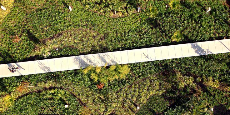 Les 26 meilleures images du tableau places squares sur for Agence paysage lyon