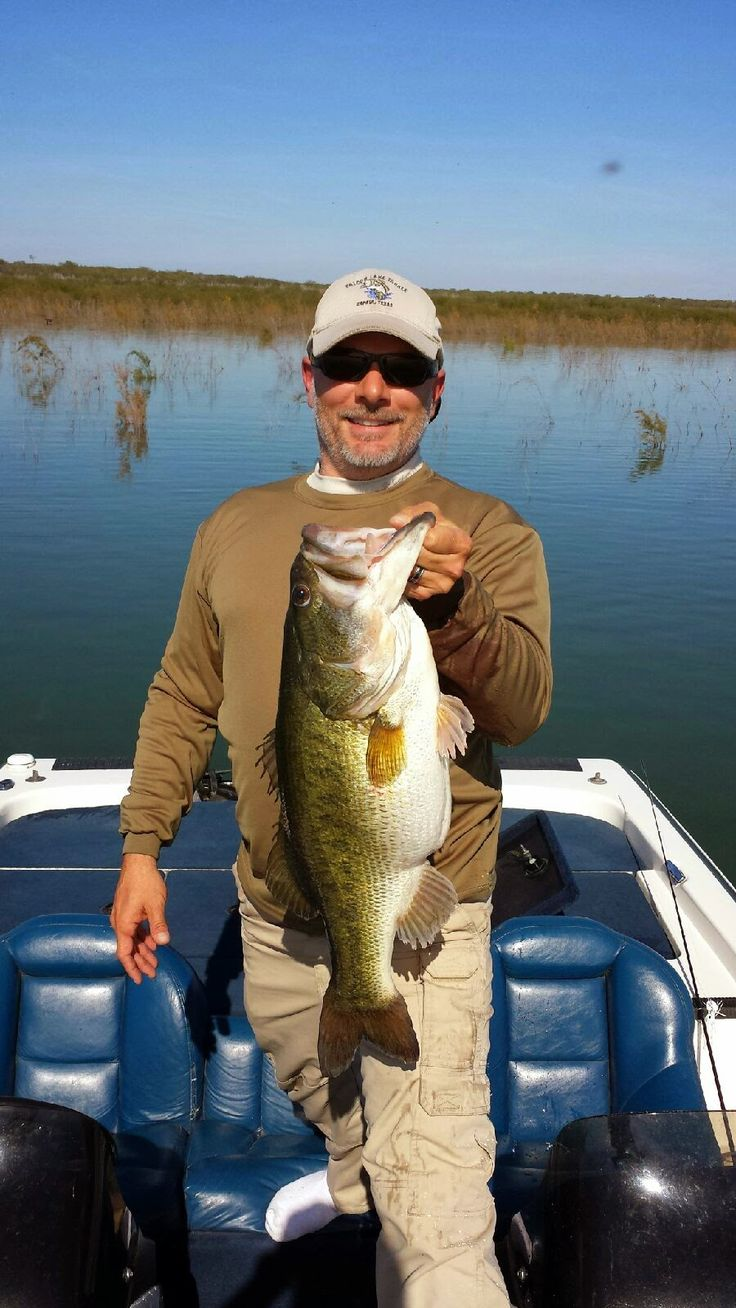Falcon lake fishing report boom baby caught today for Today s fishing forecast