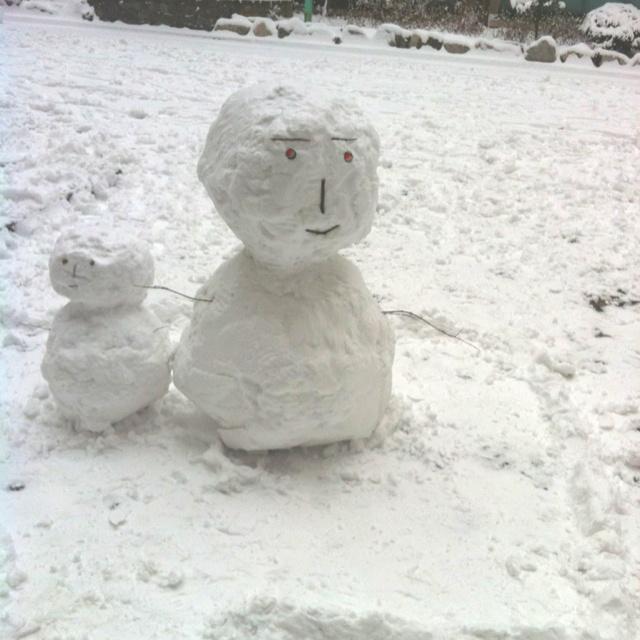 눈이 내리던 날^^