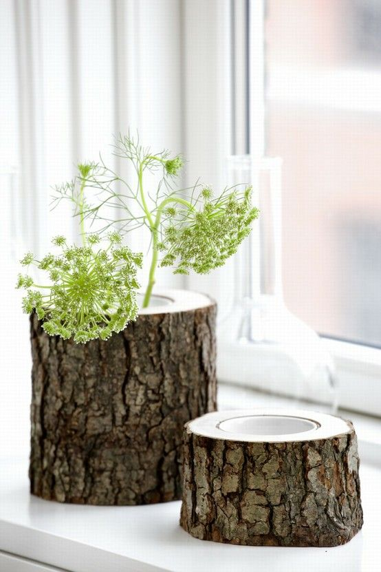 love the idea of hollowing out old chopped wood for planters