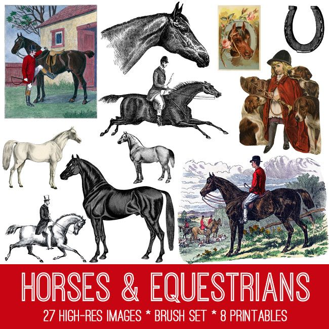Vintage Horses Image Kit! TGF Premium - The Graphics Fairy