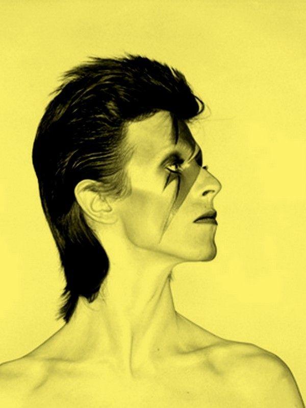 David Bowie                                                                                                                                                                                 Plus