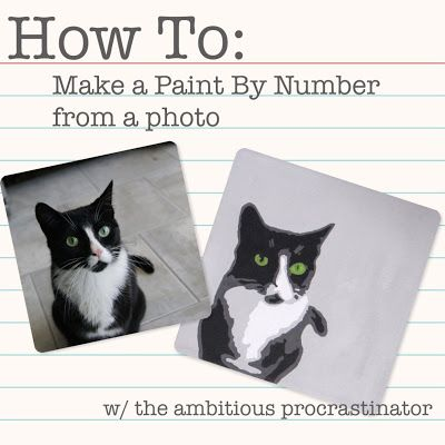 DIY Turn any photo into your own paint-by-numbers! Great project for kids or custom & thoughtful gift for friends who love their pets! You will need a free program called Picnik (awesome FREE online photo editing software) if you do not have photoshop or some other editing program.  Still SUPER CUTE & FUN!