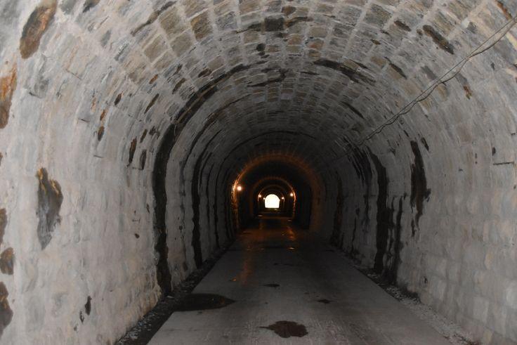 旧天城トンネル 2016.11