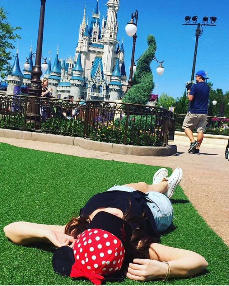 Not my photo - Disney World Hub Grass