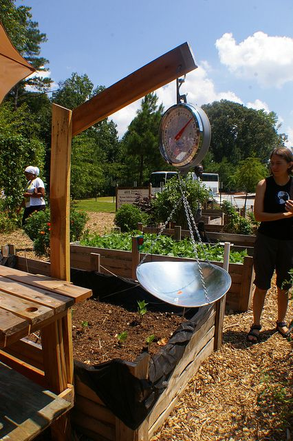 Install a scale so students can practice math by weighing vegetables, calculating selling price for school farm markets, maybe try two different organic fertilization methods on same vegetables planted same way and weigh the differences, etc.