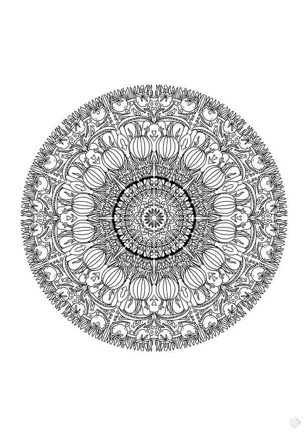 3x Mandala colouring sheet — Cookillu