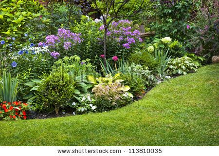 Lush landscaped garden with flowerbed and colorful plants by Elena Elisseeva, via Shutterstock