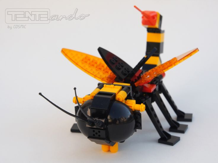 TENTEando: Insecta. Incursiones científicas.
