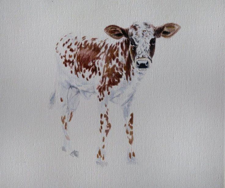 nguni cattle paintings
