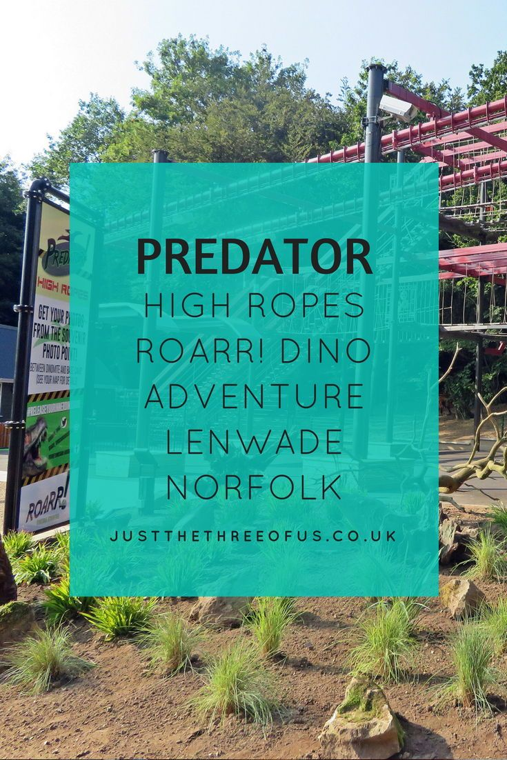 Predator High Ropes Roarr! Dinosaur Adventure Lenwade Norfolk Experience