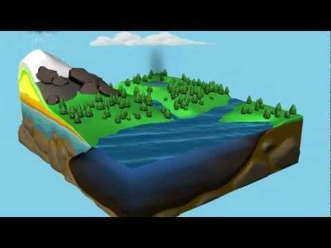 El ciclo del agua animado - YouTube