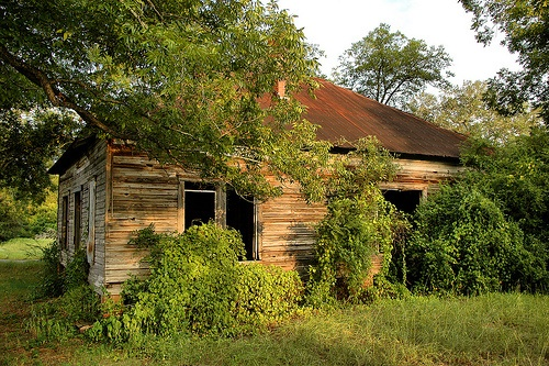 12 Best Images About Georgia Ghost Towns To Photograph On