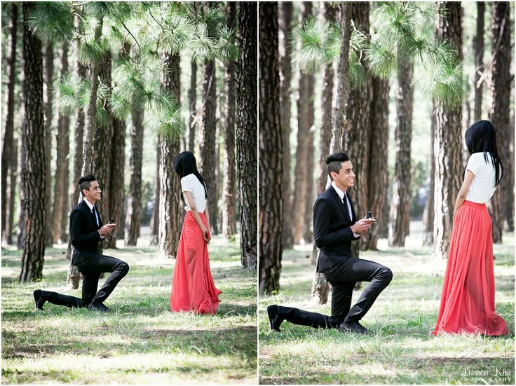 Proposal in the forest