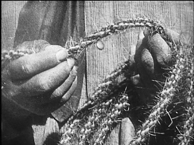 How to make a rope from wood and horse hair. The cowboys used to make their lariats this way.