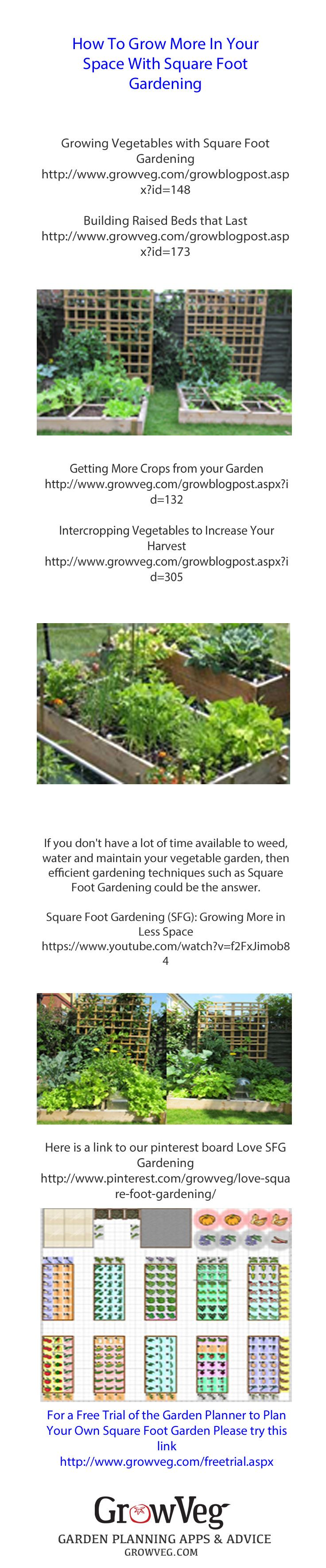 Square foot gardening combines a special nutrient rich potting  compost blend, companion planting principles and a good deal of planning for which the Garden Planner  from growveg.com is ideal. The result is that you can grow very much more produce in the raised beds than is usual. This is a great way to garden if you only have a small area, or a little time to raise a few really fresh vegetables, herbs and flowers.