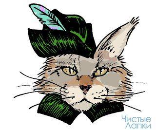 Порода кошек #мейн_кун  Наша новая статья посвящена кошкам породы мейн кун  Многие хозяева любят пушистых кошек. Это неудивительно, ведь длинная шерстка так красиво смотрится на наших любимицах. Многие породы славятся своим мехом — персидские кошки, гималайские или, например, йорки. Но не только они заслуживают признания. Сегодня мы вам расскажем о прекрасной породе кошек мейн-кун.  Ссылка www.chistye-lapki.ru