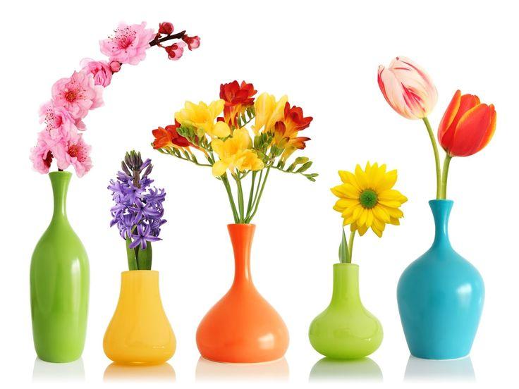 vasos coloridos, flores coloridas