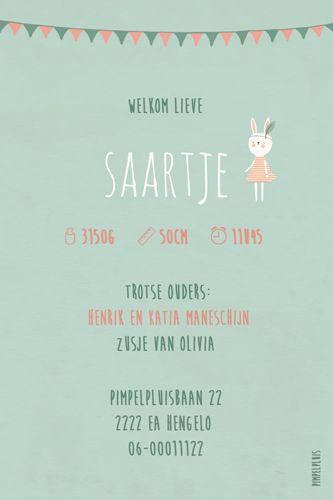 Geboortekaartje Saartje - achterkant - Pimpelpluis - https://www.facebook.com/pages/Pimpelpluis/188675421305550?ref=hl (# meisje- konijn - konijntje - vlaggetjes - ballon - modern - lief - origineel)