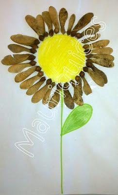 Mauriquices: A Flor do Sol!