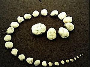 Vicky Guile создаёт очень реалистичные миниатюры из полимерной глины. Ей 34 года, она живёт в Джарроу на северо-востоке Англии. Миниатюры, изготавливаются из полимерной глины, художественного материала, который являясь пластичным и мягким, имеет свойство затвердевать после термообработки в духовке. Таким образом, сохраняя мастерство художника.