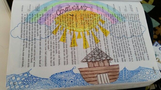 Points To Ponder About Noah's Flood | | Creation Today