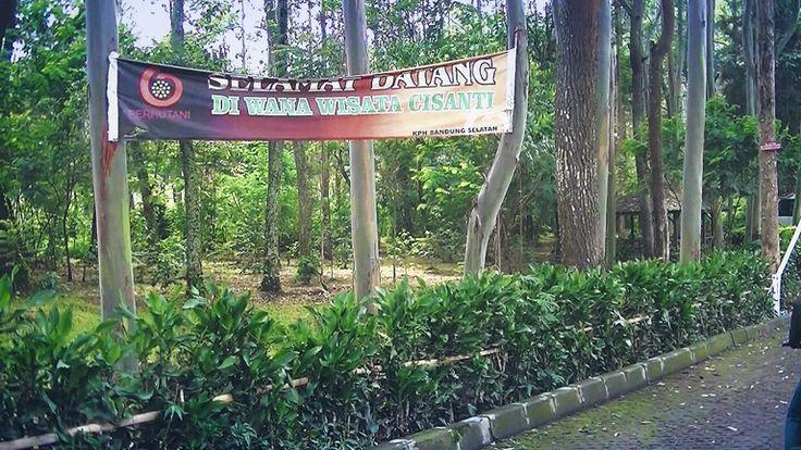 Harga tiket masuk ke situ cisanti - Informasi seputar wisata alama Situ Cisanti di Bandung Selatan