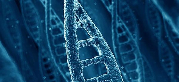 Scientists Take Promising First Step in Accelerating ALS Diagnosis