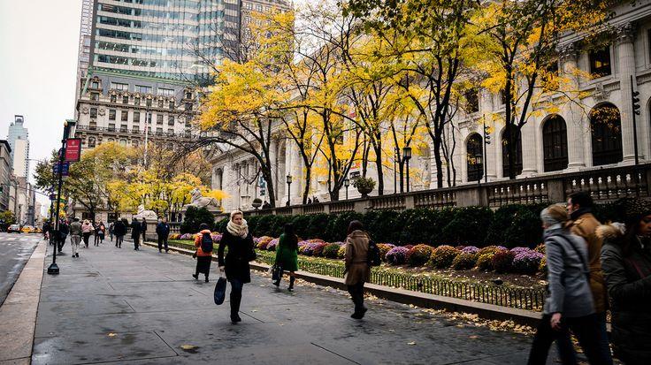 O poder econômico e social das cidades caminháveis
