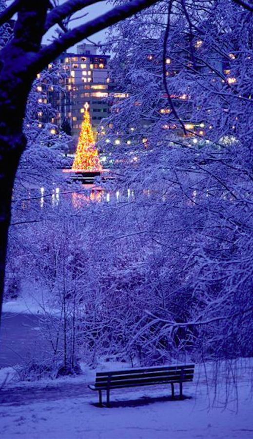 Twilight Christmas tree on Lost Lagoon at Stanley Park in Vancouver, British Columbia, Canada • photo: Patrick O'Leary on ArtFlakes