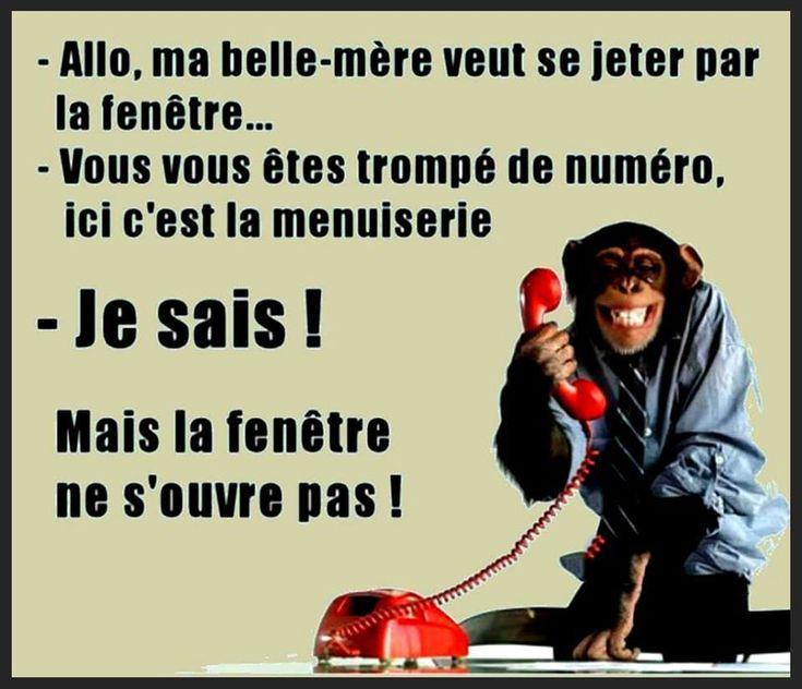 201 best blagues et humour images on pinterest for Fenetre qui ne s ouvre pas