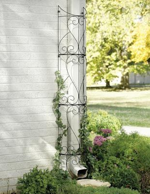 "Circular Outdoor Garden Trellis $17   Conceal downspouts with a clever landscaping illusion. Semicircular trellis wraps around the pipe and provides a trellis for climbing plants. Four easy to assemble metal sections, stands 6-ft. Hardware incl. Assembly required. 71 1/2""H x 10""W  on waiting list for availability  12.7.12"