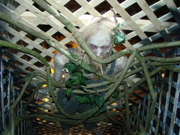 Homemade Haunted House Props | Another good idea here. They used a lot of lattice ceiling panels to ...