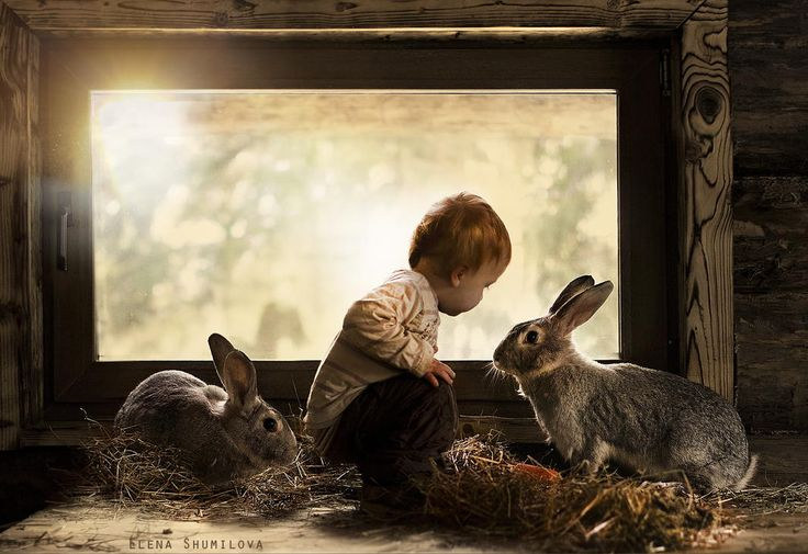 because it's almost Easter.....Photograph Untitled by Elena Shumilova on 500px