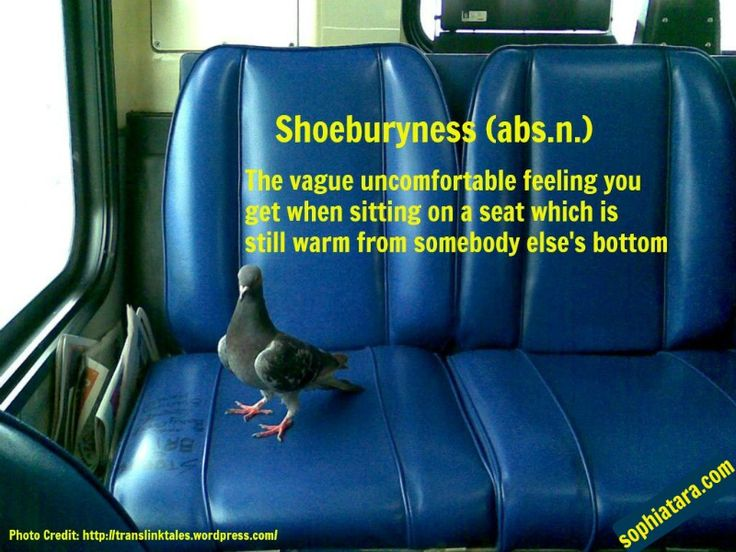 SHOEBURYNESS (abs.n.) The vague uncomfortable feeling you get when sitting on a seat which is still warm from somebody else's bottom.