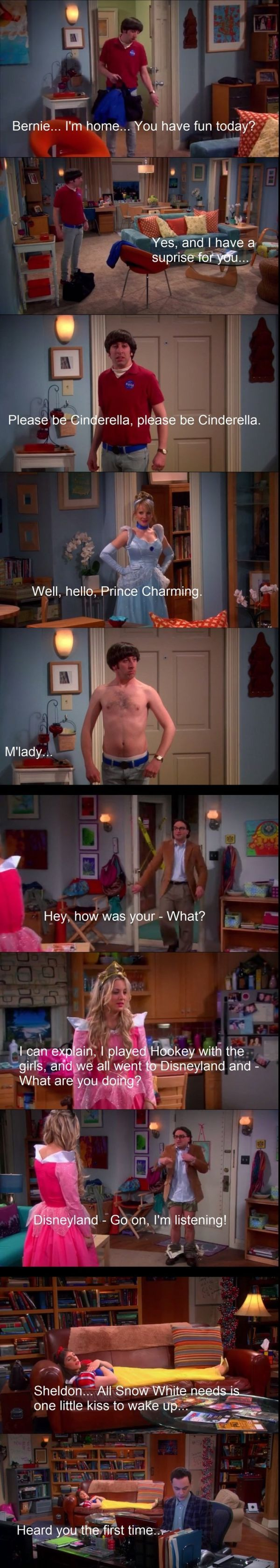 Disneyland Big Bang Theory