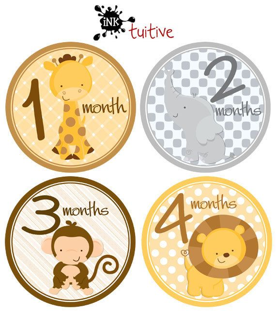 Monthly Baby Stickers, Milestone Stickers, Baby Month Stickers, Monthly Bodysuit Sticker, Monthly Growth Stickers Jungle on Etsy, $9.00