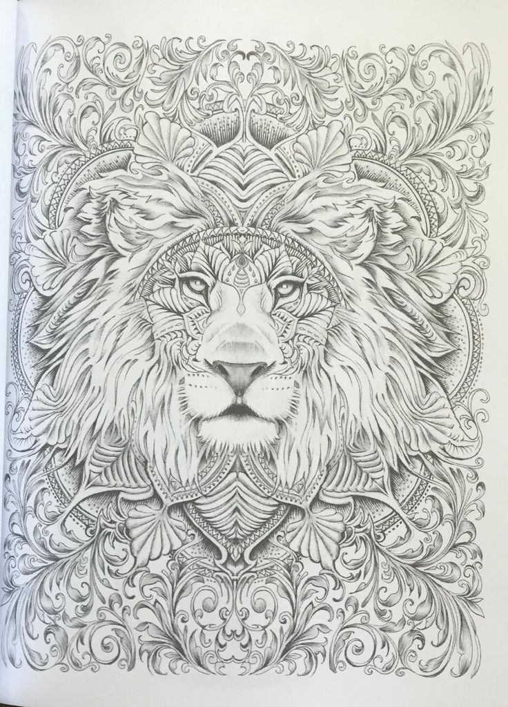 118 best Adult Coloring Pages with Animals images on Pinterest - fresh coloring pages lion head