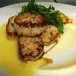 Seared Scallops With Carambola Sauce, Parsnip And Succotash Recipes ...