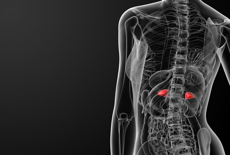 While recent stress, poor sleep, depression, sleep apnea, or poor diet can all impact your energy levels, the Endocrine Society claims that in rare cases your adrenal glands, and a condition known as adrenal insufficiency, may be the problem...