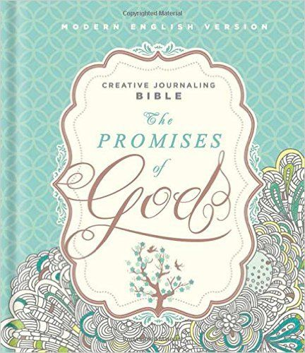 The Promises of God Creative Journaling Bible: Modern English Version (MEV): Passio: 9781629990927: Amazon.com: Books