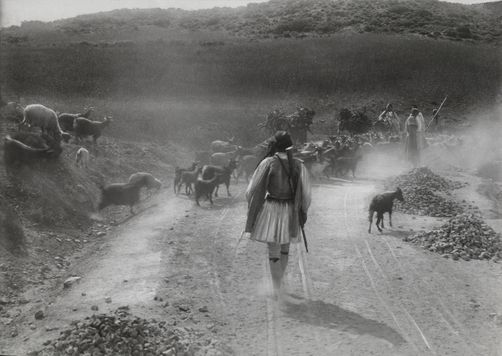 A shepherd tends to his flock as bystanders watch from the roadside. 1900s. Location: Sparta, Greece. Photographer: FRED BOISSONNAS/National Geographic Creative