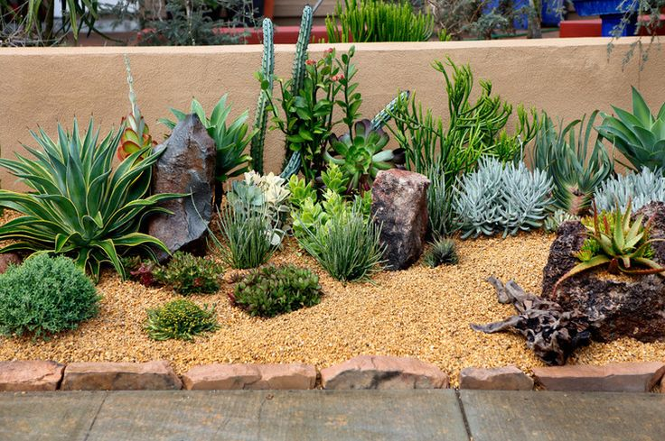 Southwestern Landscape. Easy addition even for northern climate. Just have to choose hardy cactus.